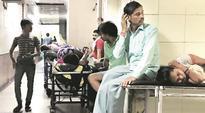 Control, surveillance need to begin before peak period, says study on chikungunya virus