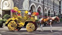 DNA Micro Edit: Loophole in rehabilitation of victoria cart owners