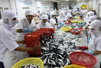 Seafood shifts focus back to the domestic market