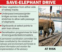 Rajdhani runs over jumbos in Assam