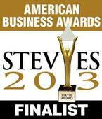 INSZoom Selected as Finalist for the Prestigious 2013 American...