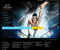 Drupal Community Awards Best Sports Site of 2013 to Project6 Design