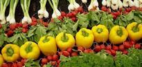 Feds raid farmers' market, order food destroyed