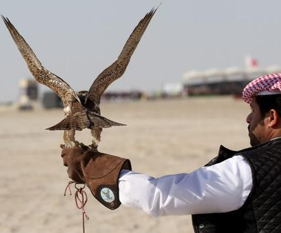 UAE Deputy PM's bustard hunting convoy attacked in Pak
