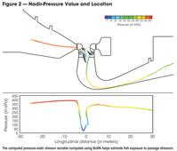 Computational Tools to Assess Turbine Biological Performance