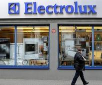Electrolux to put $250-mn investment on hold after Trump's tariff proposals