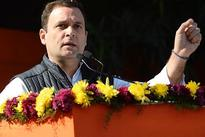 Rahul put up nice campaign; results a win for Cong: Gehlot