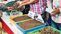 Composting self-help groups falling short of space, asks BMC for more space