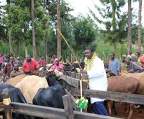 NCPB to register farmers for price, fertiliser subsidies