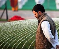 Rahul Gandhi is inexperienced and lacks vision
