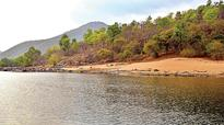 Poachers rule the roost in Cauvery wildlife sanctuary