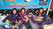 Adopt a puppy at stall at the mall