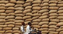 No shortage of food grains to implement food security under NFSA: Centre