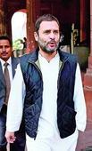 Vanity of PM taking toll: Rahul
