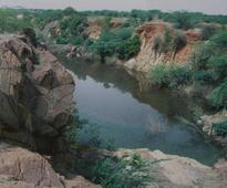 Dry spell hits Aravalli Biodiversity Park