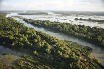 Cambodia to add 1 million hectares of protected forest