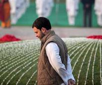 Rita Bahuguna Joshi's deflection reveals discontent against Rahul Gandhi, Congress