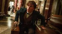 Harry Potter prequel's final trailer makes wizard show with Eddie Redmayne