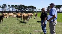 Crop trial results to be revealed at Waimate West Demonstration Farm spring field day