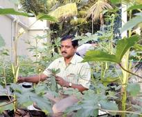 Kochi, India Corporation, to promote organic farming in 5,000 city household