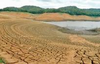 Kerala govt seeks Rs 991 cr from Centre to tackle drought