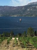 Hot air balloon crashes into B.C.'s Okanagan Lake