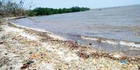 NIO scientists take stock of tar ball substance at Khariwada