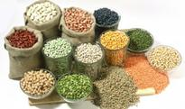 Farmers in Africa to benefit from hybrid seeds