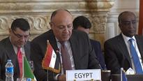 Egypt hosts Libya's neighbouring countries meeting to resolve political conflict