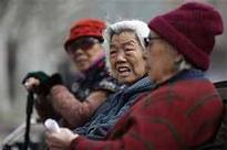 New Pension Scheme subscribers earn double digit return in 2012-13