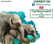 15-month-long Gaj Yatra to promote elephant conservation