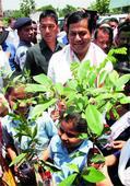 Nurture of nature, now in schools