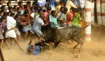Jallikattu protests: Police keep tight vigil after more than 200 people arrested