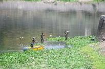 Maha govt to make Bhima river pollution-free