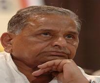 Tauqeer to back Mulayam singh yadav if Samajwadi Party splits