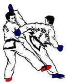 Taekwondo - Tunisian athletes Rahma Ben Ali, Oussama Oueslati and Yacine snatch their tickets for 2016 OG