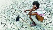 Drought-like situation in Madurai, neighbouring districts