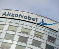 Shareholders take Akzo Nobel to court in effort to aid PPG takeover