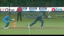 Even on a wheelchair MSD will stump faster than a 25-year-old: Twitter reacts to another brilliant stumping