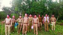 After Nagaland, Assam saves falcons