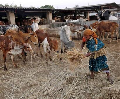 Rural markets still key for FMCGs