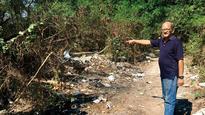 Yari Road locals file plaint over burning trash near mangroves