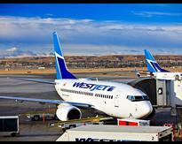Alaska Airlines Employee Calls Tomi Lahren 'Tami,' Twitter Loves It