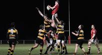 Young Munster pushed all the way by improved UL Bohs