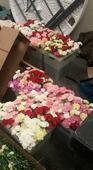 Utah Teen Buys 900 Valentine's Day Flowers — One For Every Girl at His High School