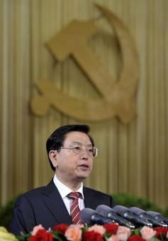 Bo Xilai's successor elected to head China's parliament