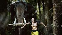 Oh No! Vidyut Jammwal gets injured on the sets of 'Junglee'