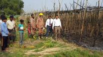 Fire guts 3 betel gardens in Jhenidah