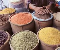 Pulses trade on the agenda for India-Canada talks