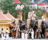 Kerala Government Passes Law Allowing People To Own Elephants PETA Lashes Out
